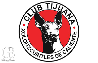 Club America vs. Xoloitzcuintles