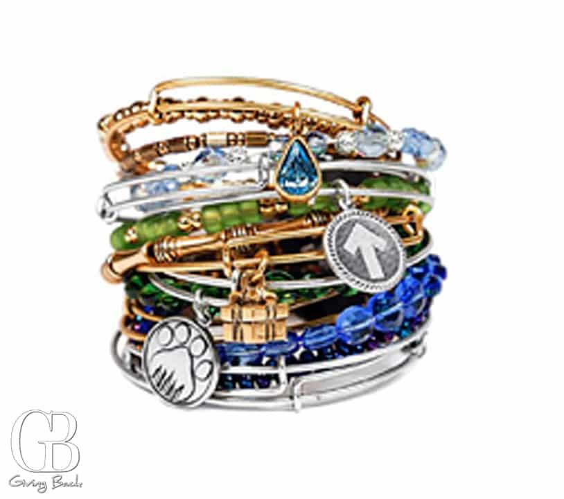 Alex   Ani Charm Bracelets