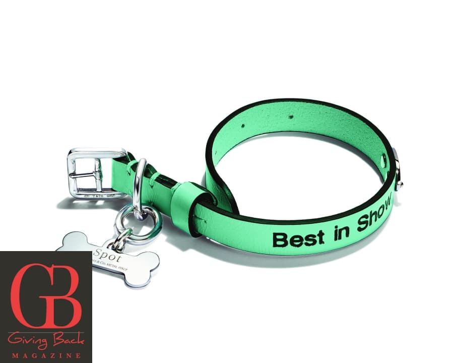 Pet Collar in Tiffany Blue Leather and Bone Pet Charm