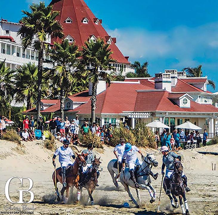 Polo On The Beach
