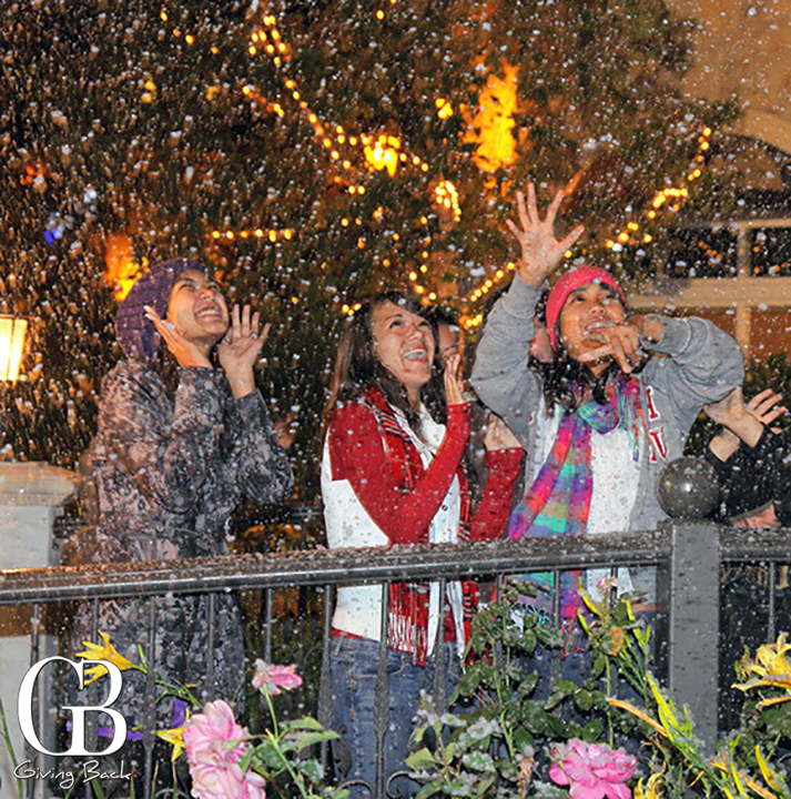Snowfall at Village  Walk