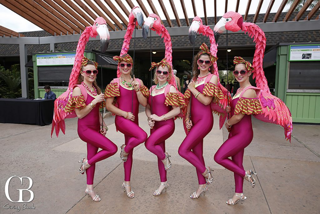 The Flamingo Girls