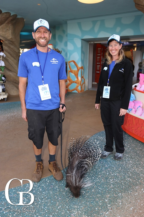 Todd Glazebrook and Mary Talle with Taro  the African Crested Porcupine