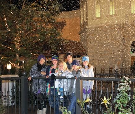 Village Walk Snowfalls ().JPG