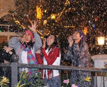 Village Walk Snowfalls.JPG