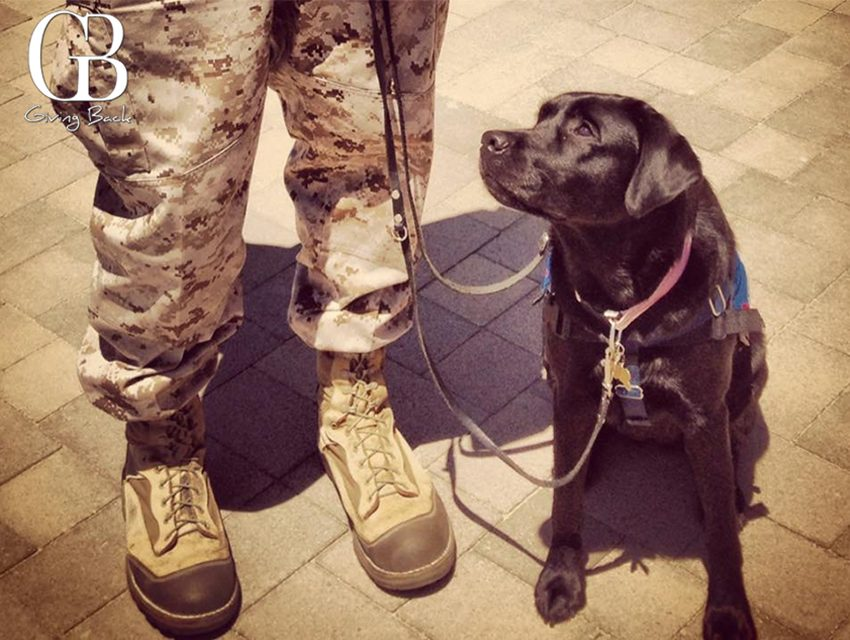 10 Things About SSgt. James C. Henninger & Freedom Dogs