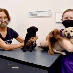 10 Things About Jessica Lundgren & <br> Helen Woodward Animal Center